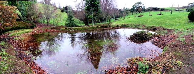 Pond 2015
