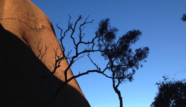 Uluru 27