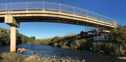 Waiongana footbridge